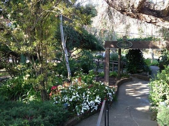 Carmel Valley Lodge照片