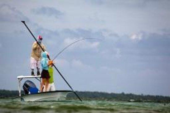 Turneffe Flats : Guided Fishing