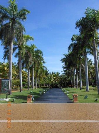 Catalonia Bavaro Beach, Casino & Golf Resort: resort grounds
