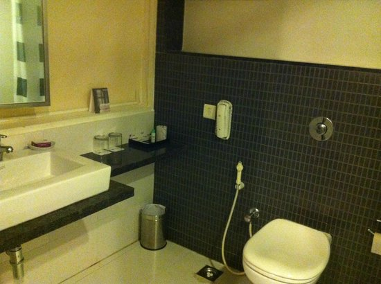 Minerva Grand Banjara: Bathroom