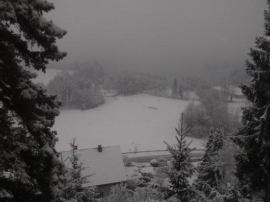 Hotel Triglav Bled: Vistas desde el comedor