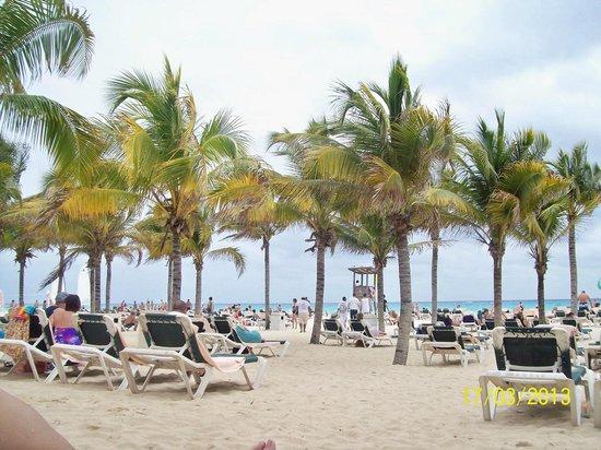 Hotel Riu Playacar: reposeras y palmeras del hotel