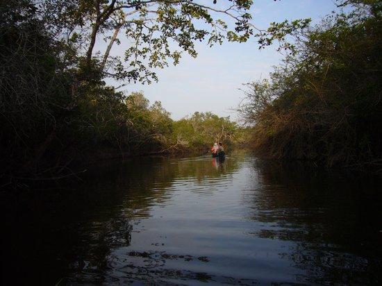 Lamanai Outpost Lodge: Sunrise canoe trip