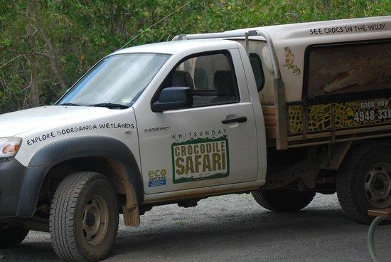 Whitsunday Crocodile Safari: Wish we could have gone again!!