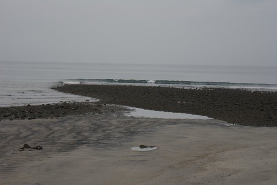 Bay View Hotel: Low tide