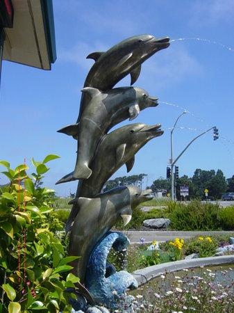 Emerald Dolphin Inn: The Fountain of Hospitality