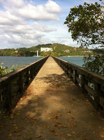 Grand Bahia Principe Cayacoa: Bridge to no where