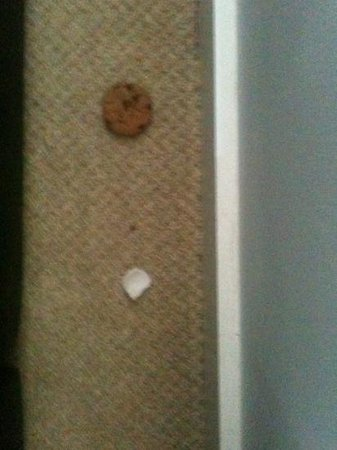 Escape Apartments : biscuit and other rubbish behind sofa