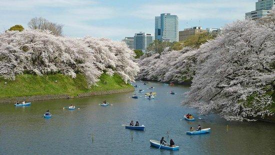 Chiyoda, Japan: 7