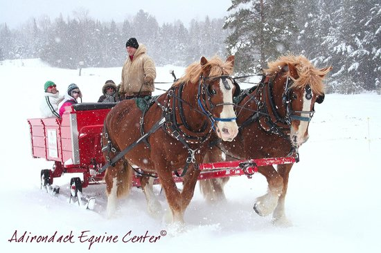 Lake Placid Sleigh Rides: Snowy ride with family