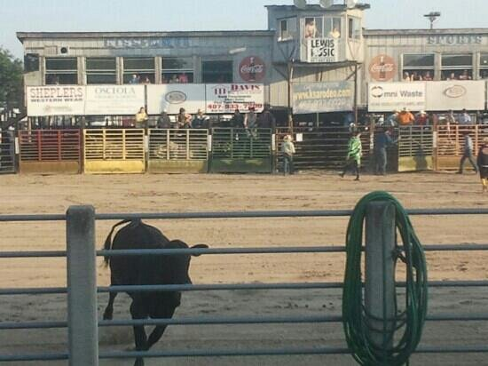 The Kissimmee Sports Arena Rodeo: run!