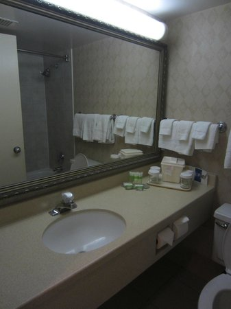 Durham Hotel & Conference Centre : Bathroom