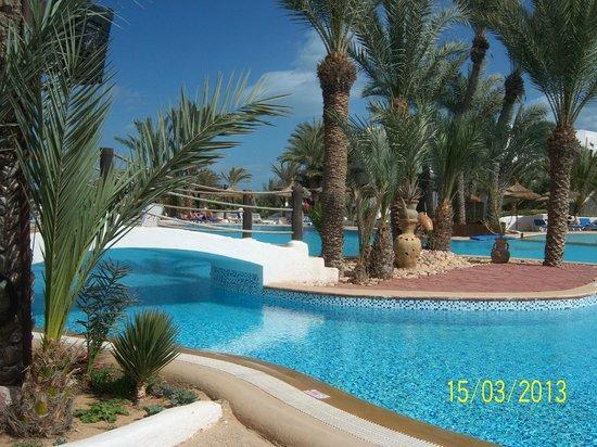piscine paradisiaque picture of fiesta beach club djerba midoun tripadvisor. Black Bedroom Furniture Sets. Home Design Ideas