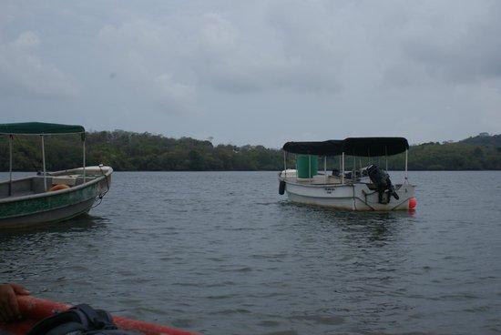 EcoHotel Boca Brava: Boat ride to hotel