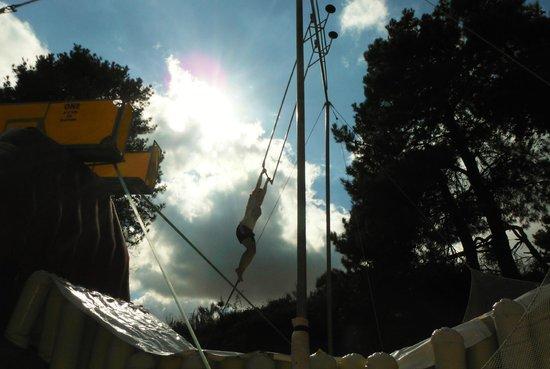 Action World Taupo : Trapeze