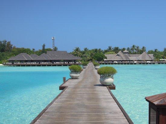 Olhuveli Beach & Spa Maldives: arrivée