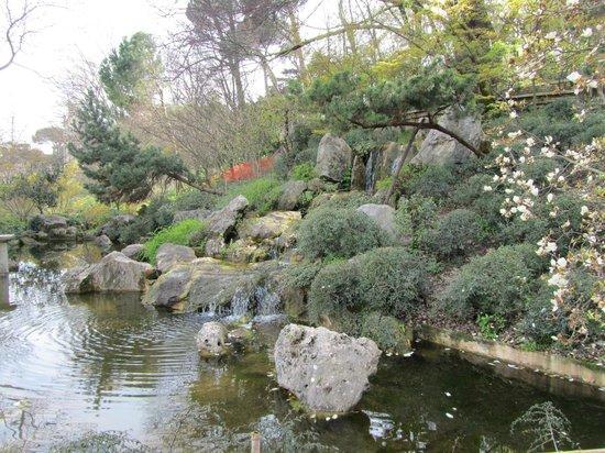 Il sentiero dei giardini giapponesi picture of orto botanico di