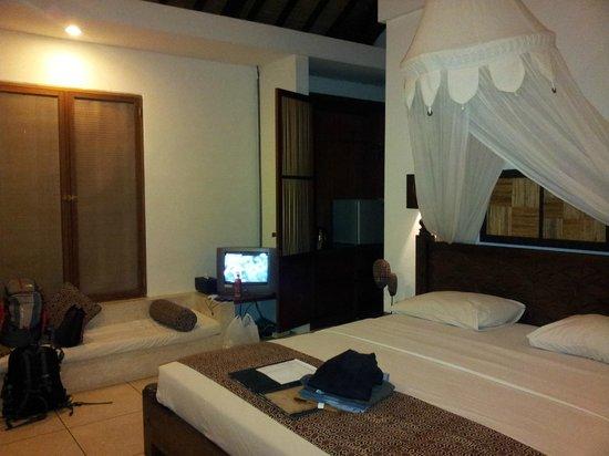 Ubud Villas and Spa: the spacious room. wardrobe of NARNIA