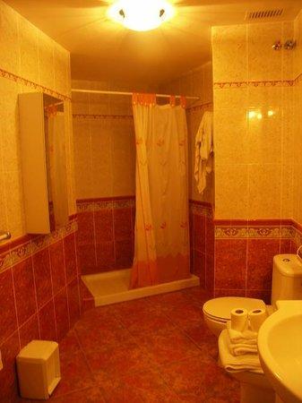 Apartamentos La Fonda: bathroom