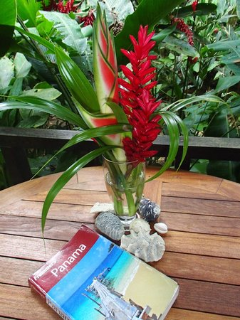 Red Frog Bungalows: Flower arrangement