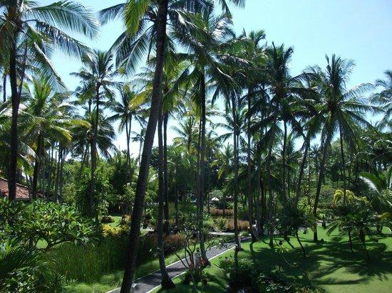 Melia Bali: Hotel gardens
