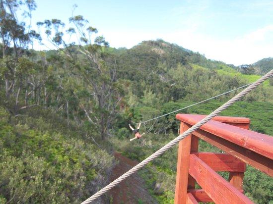 Kauai ATV Tours: wild!