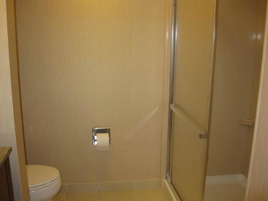 Hampton Inn & Suites Bakersfield North-Airport: Shower area