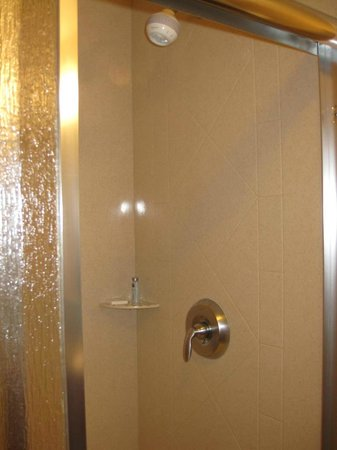 Hampton Inn & Suites Bakersfield North-Airport: Shower head