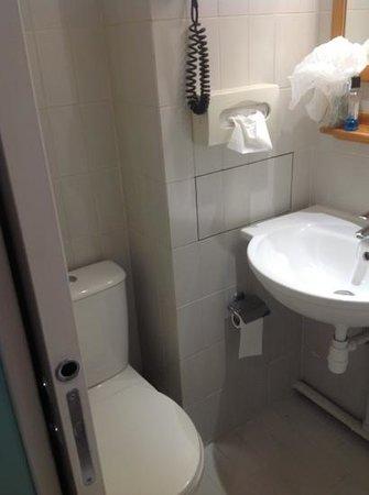 Hotel Des Canettes: baño