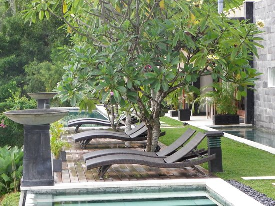 The Puncak: Cosy and relaxing