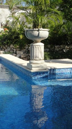 The Villa Tievoli: reflection in the pool