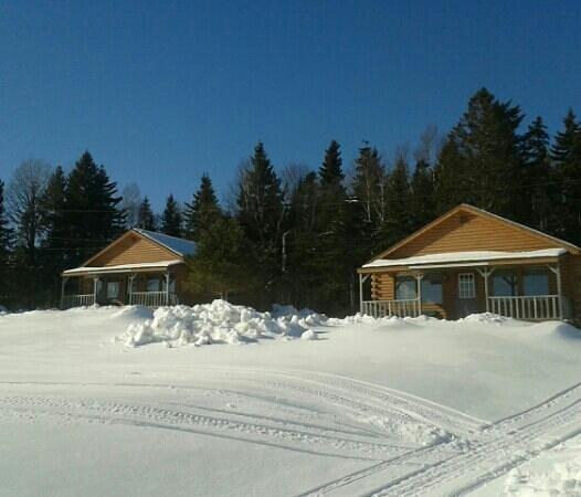 Broadleaf Guest Ranch * Cabins