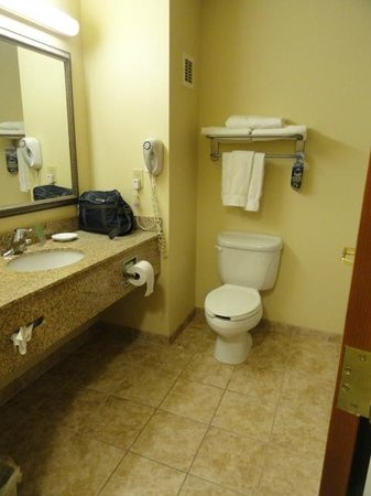 Holiday Inn Express Hotel & Suites Rocky Mount/Smith Mtn Lake: bathroom