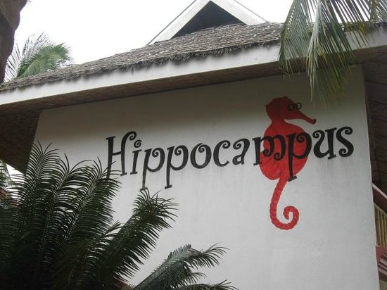 Hippocampus Beach Resort: The hotel sign as seen from the beach