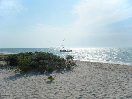 Casa de Celeste Vida: Pescadores frente a la playa