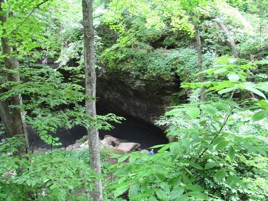 Maquoketa (IA) United States  city photos gallery : Maquoketa Caves State Park Natural Bridge Picture of Maquoketa ...