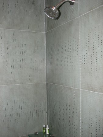 Hotel Villa Condesa: Shower