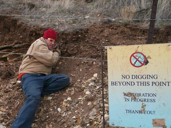 Fossils at Wheeler High School: Bad boys of paleontology.