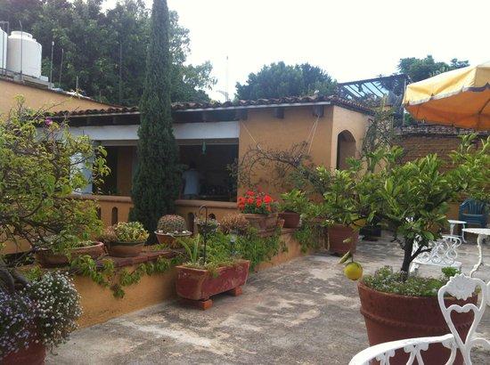 Hotel Azucenas: Terraza