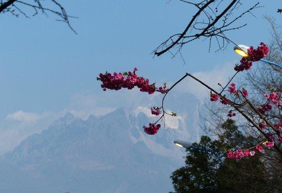 Guanfang Resort & Villas Lijiang : Mountain view from the window