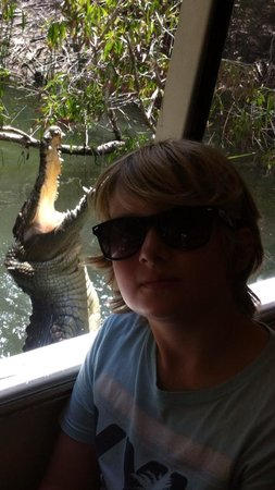 Hartley's Crocodile Adventures: Oh yes it's real !!!