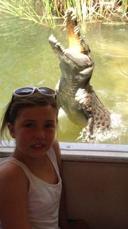 Hartley's Crocodile Adventures: Up close & personal !!