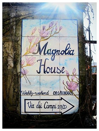 Magnolia House: At the street side gate.