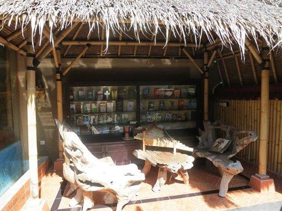 Taruna Homestay: Die Bücherecke