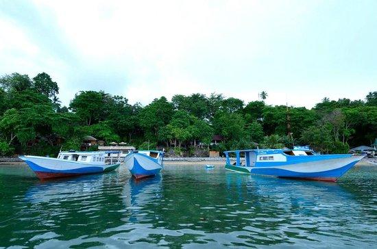 Froggies Divers Bunaken: Froggies Dive Boats