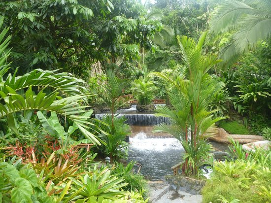 Guanacaste Viajes and Tours: Tabacon Hot Springs Resort