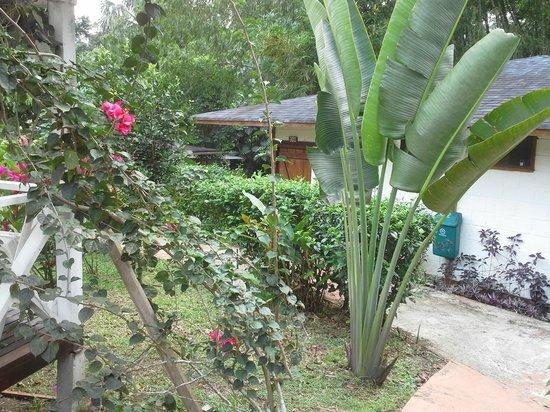 Terra Luna Lodge : manicured gardens