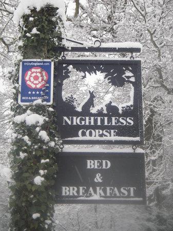 Nightless Copse : Winter