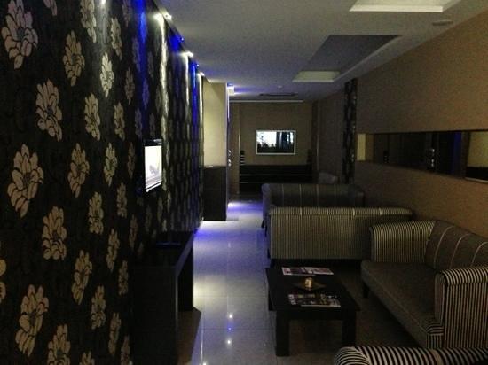 Susuzlu Seckin Hotel : Lobby