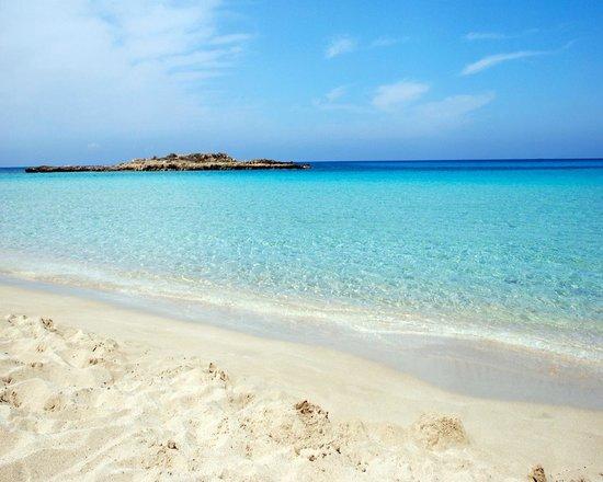 Fig Tree Bay Cyprus Hotels
